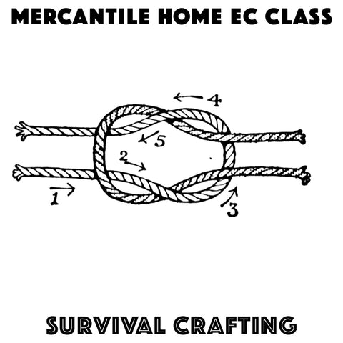 Survival Crafting (June 28)