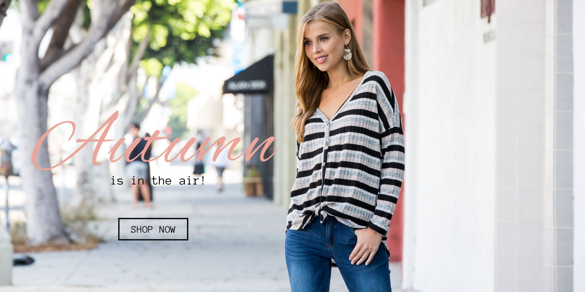 Classic Womens Clothing Shop Jenny Boston Boutique For Fashion - Free invoice women's clothing online stores