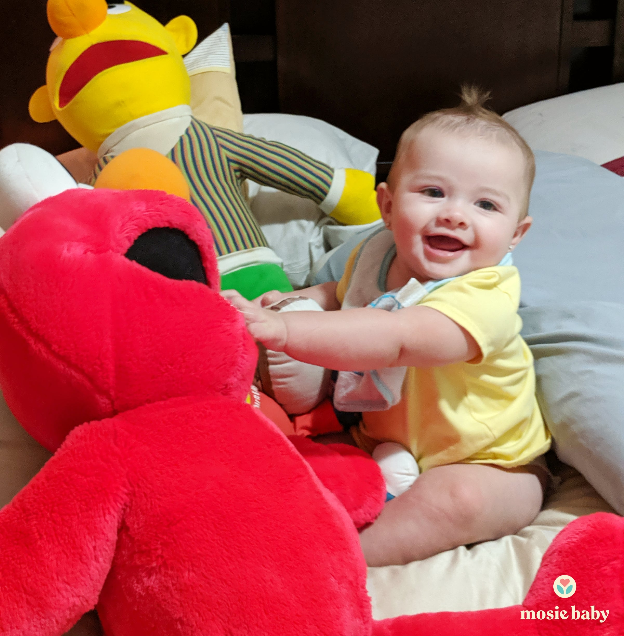 mosie baby with elmo