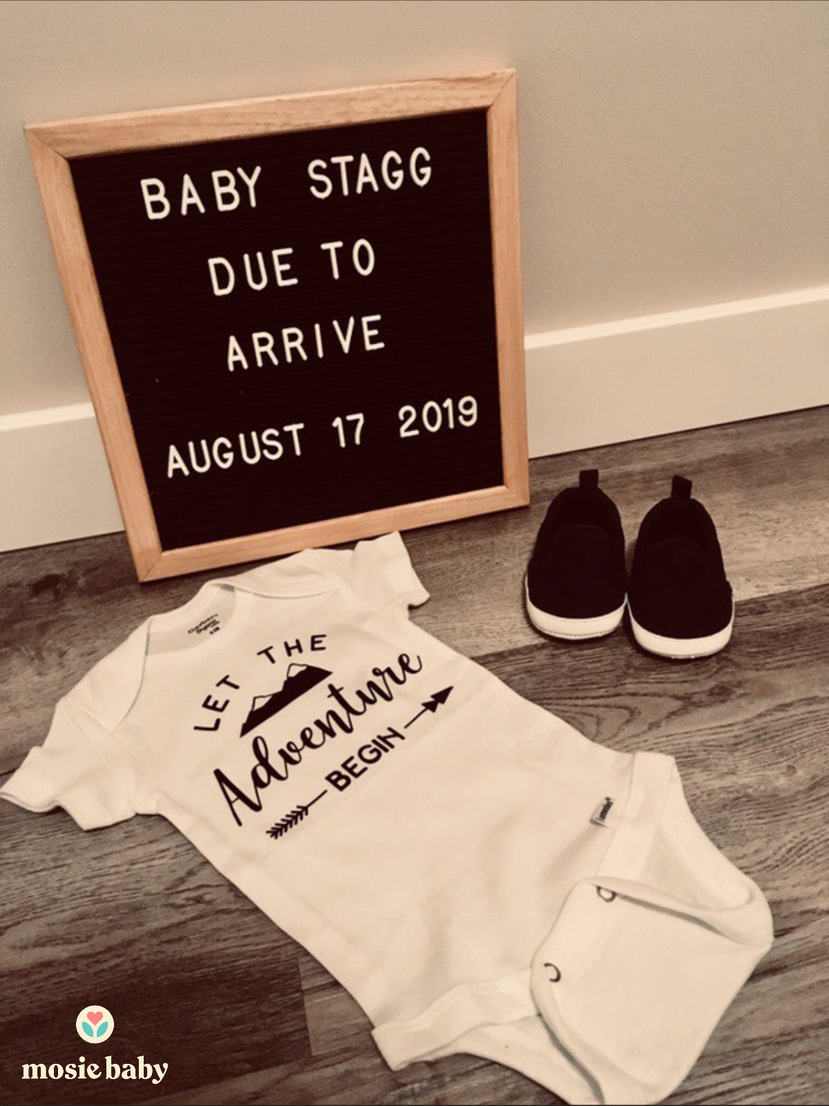 "mosie baby pregnancy announcement that says ""let the adventure begin"""