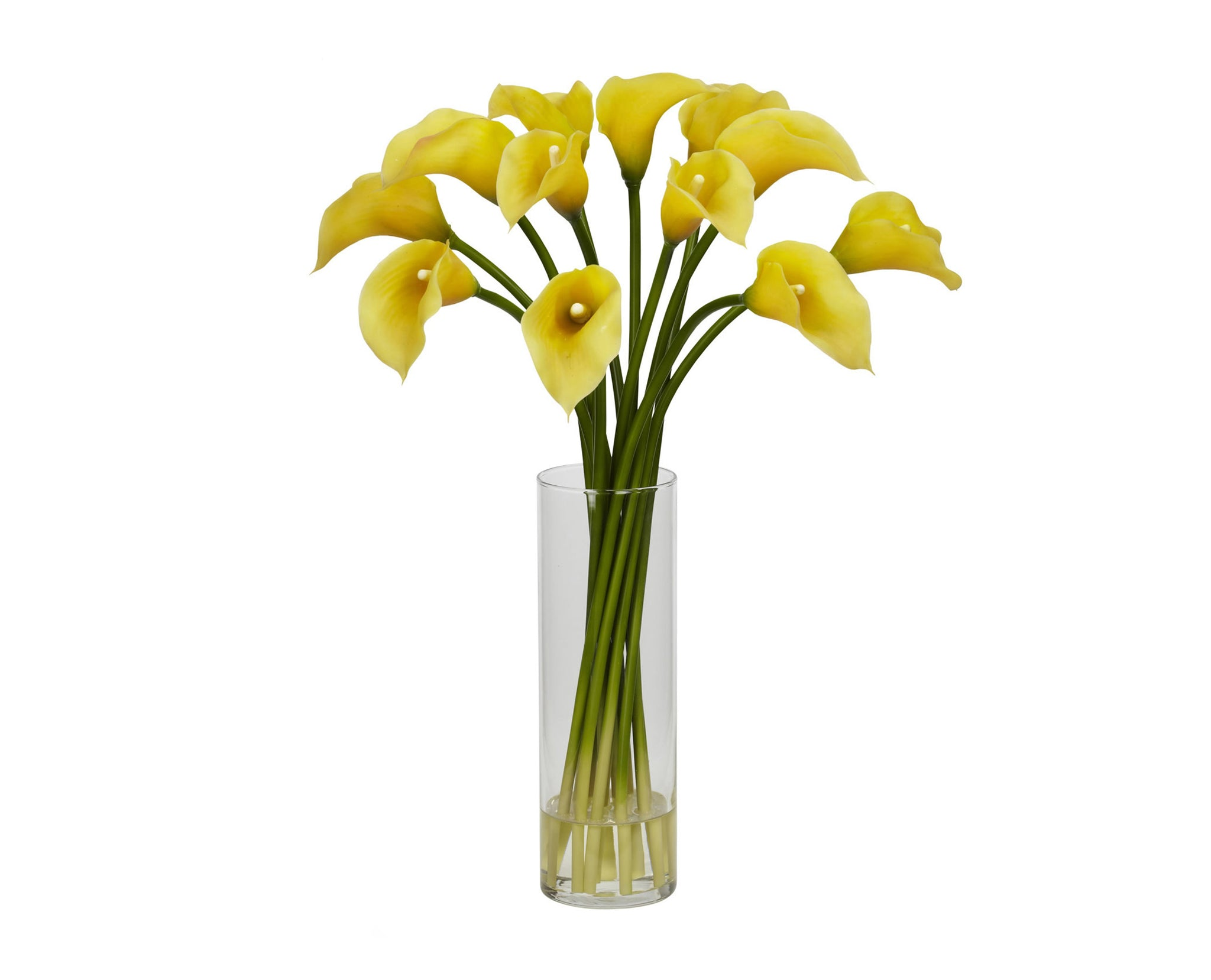 Calla Lilies Yellow Flowers
