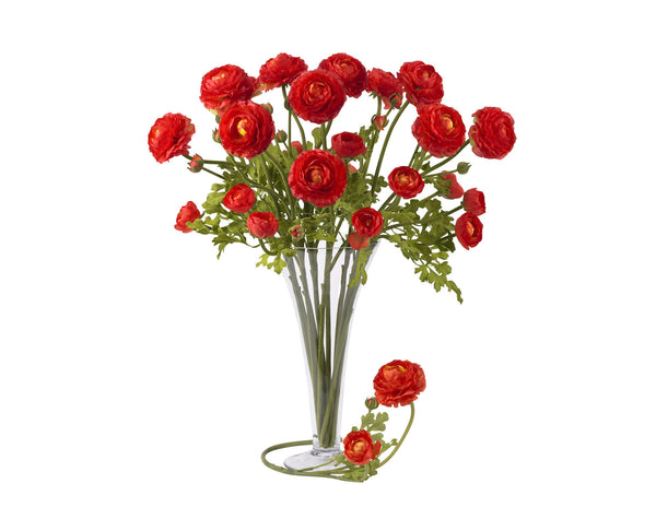 Ranunculus Red Flowers