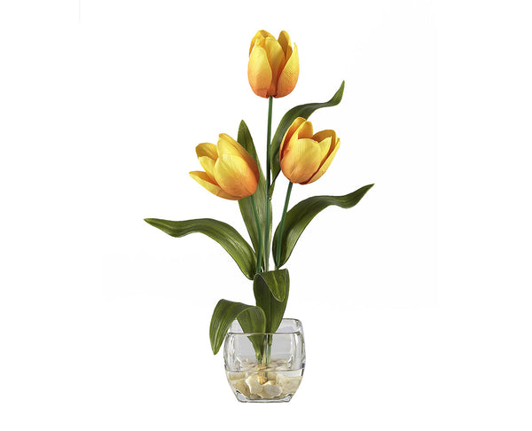 Tulips Yellow Flowers