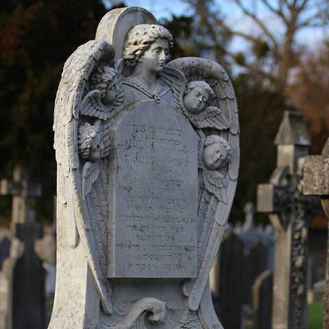 Dead Interesting Glasnevin
