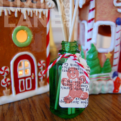 Holiday Theme Aromatic Oil Diffuser Set