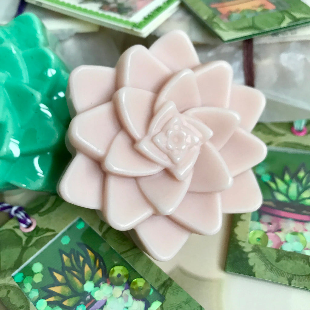 Succulent Grab Bag • Mighty Mango Butter Soap