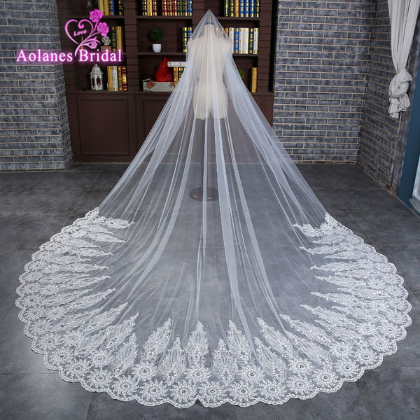 95227810c8 AOLANES 2018 New Luxury Long Bridal Veils 4m Lace Appliques Crystals Wedding  Veil Wedding Accessories Handwork