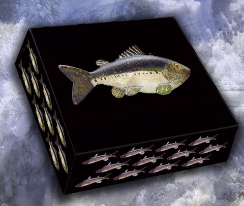 American Fish Decoy Note Cards, Master Series 3