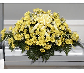 Yellow Casket Spray CTT 41-11