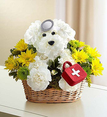 Doggie Howser Basket