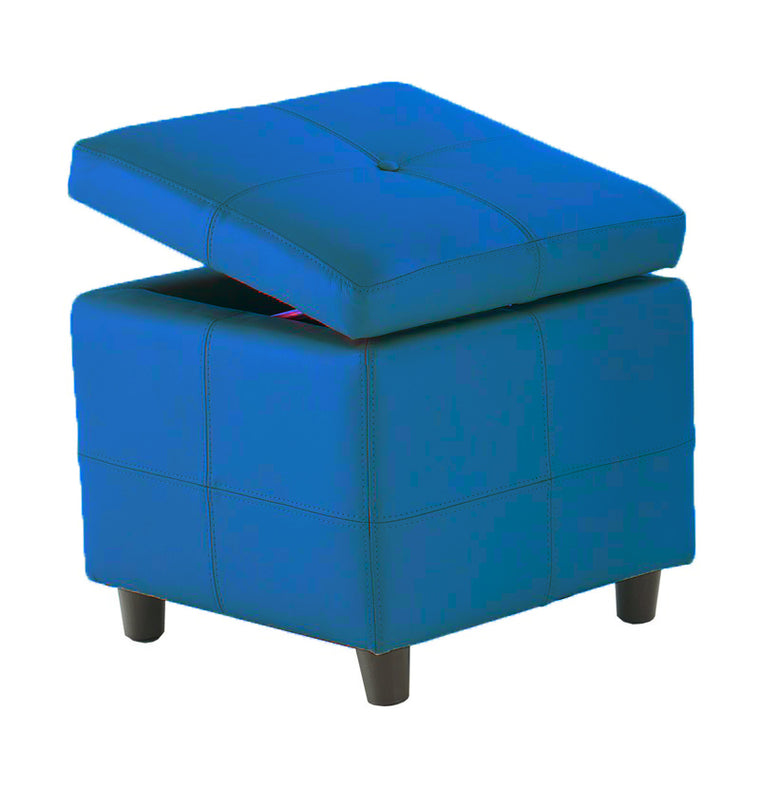 "Connor Storage Ottoman 18""w x 18""d x 17""h"