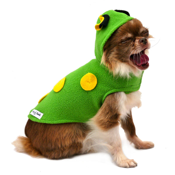 The Frog Costume