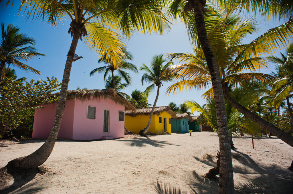 Catalina Island, La Romana, Dominican Republic. A line of bright painted bungalows nearby the cost line, shaded with palm trees (landscape).