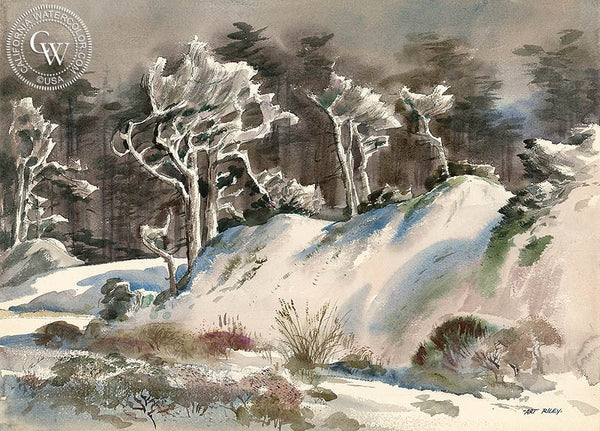 Icy White Night (17 Mile Drive), California art by Art Riley. HD giclee art prints for sale at CaliforniaWatercolor.com - original California paintings, & premium giclee prints for sale