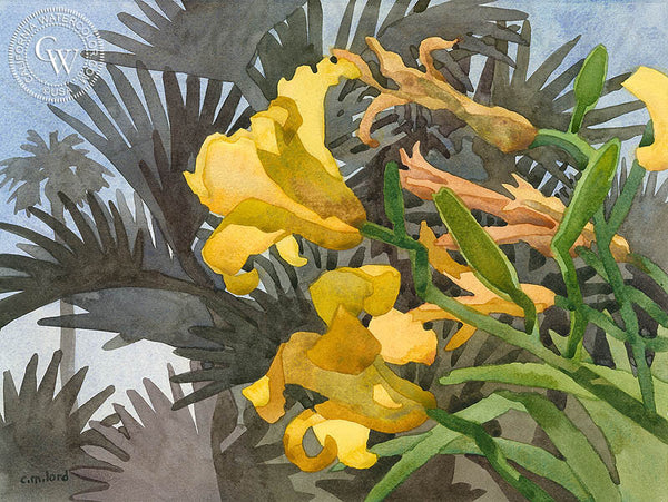 Laguna Lilies, California art by Carolyn Lord. HD giclee art prints for sale at CaliforniaWatercolor.com - original California paintings, & premium giclee prints for sale