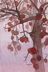 Midwinter Persimmons, 2018, a California watercolor painting by Carolyn Lord. HD giclee art prints for sale at CaliforniaWatercolor.com - original California paintings, & premium giclee prints for sale