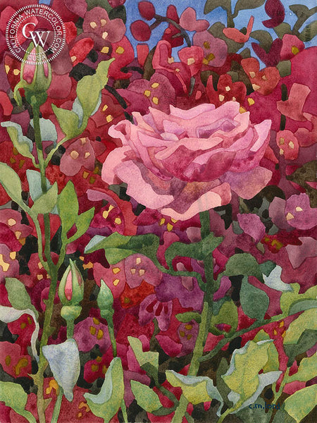 Pink, Pink, California art by Carolyn Lord. HD giclee art prints for sale at CaliforniaWatercolor.com - original California paintings, & premium giclee prints for sale