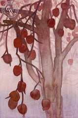 Solstice Persimmons, 2018, a California watercolor painting by Carolyn Lord. HD giclee art prints for sale at CaliforniaWatercolor.com - original California paintings, & premium giclee prints for sale