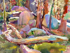 Deep in the Shadows, Sequoia National Park, California art by Glen Knowles. HD giclee art prints for sale at CaliforniaWatercolor.com - original California paintings, & premium giclee prints for sale