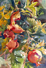 Pomegranates, California art by Glen Knowles. HD giclee art prints for sale at CaliforniaWatercolor.com - original California paintings, & premium giclee prints for sale