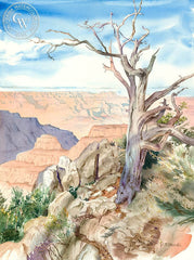 Grand Canyon, California art by John Norman Stewart. HD giclee art prints for sale at CaliforniaWatercolor.com - original California paintings, & premium giclee prints for sale