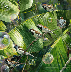 Bubble Birds, California watercolor art by Ken Goldman. HD giclee art prints for sale at CaliforniaWatercolor.com - original California paintings, & premium giclee prints for sale