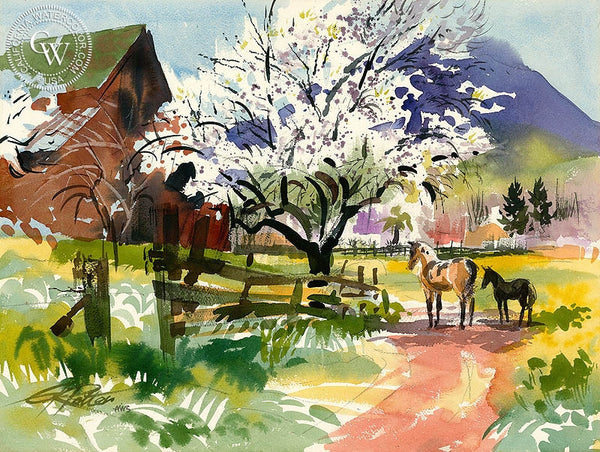Almond Blossoms, Clayton, 1969, California art by Ken Potter. HD giclee art prints for sale at CaliforniaWatercolor.com - original California paintings, & premium giclee prints for sale