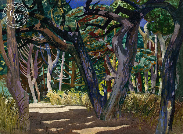 Old Pines at Haven's Neck, 1962, California art by Millard Sheets. HD giclee art prints for sale at CaliforniaWatercolor.com - original California paintings, & premium giclee prints for sale