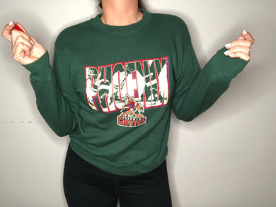 Vintage Phoenix Coyotes Original Old Logo Crewneck - Youth Large / Adult XS