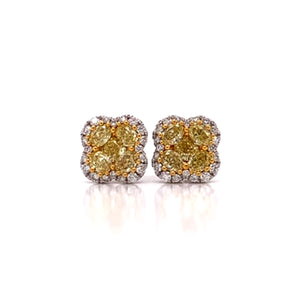 "Fancy Yellow & White Diamond ""Clover"" Earrings"