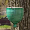 Hanging planter Emerald Green modern Urban Garden gardening Bowl
