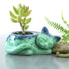 Kitty planter, succulent cactus handmade  ceramic pottery planter