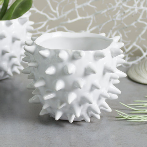 Mini Planter White Spiky Urchin Bowl Ceramic Modern Minimalist Pottery Ceramic Succulent Planter