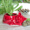 Ruby Red Kitty planter