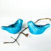 Love Birdies in turquoise