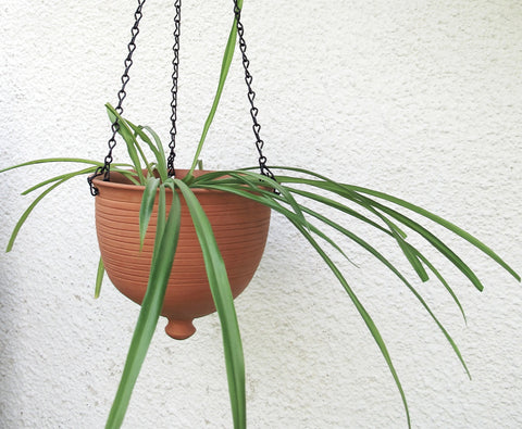 Large Hanging planter terracotta unglazed modern Urban Garden gardening Bowl