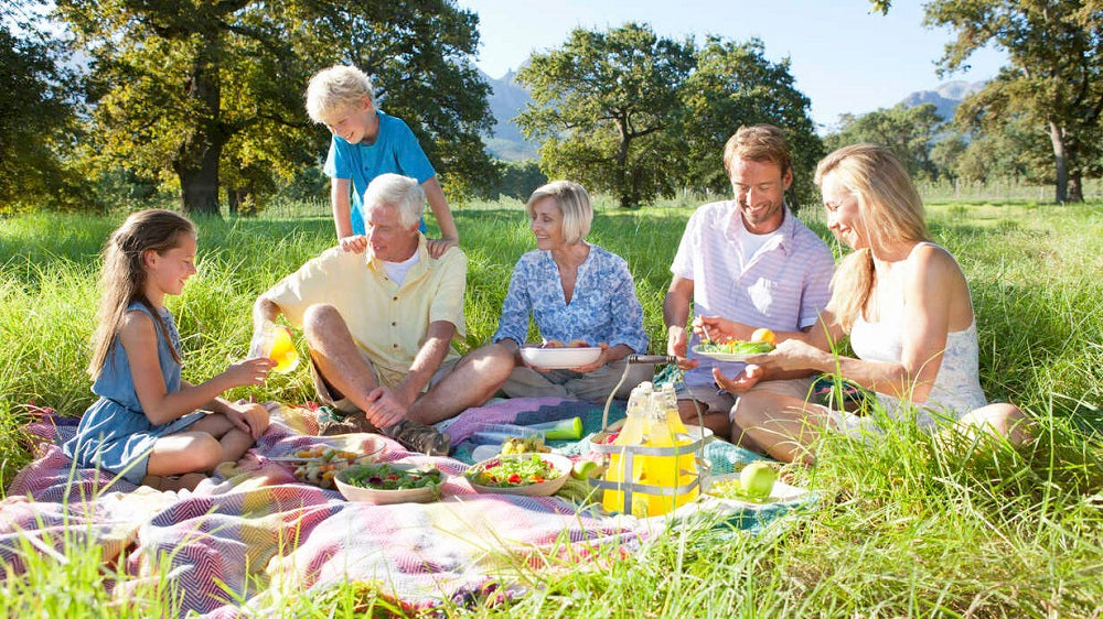 Best Tips for A Perfect Picnic