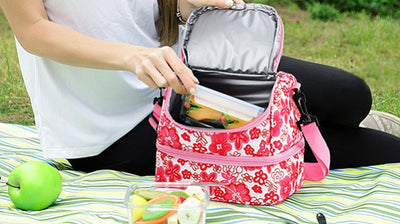 The Best Insulated Lunch Bag for Kids in MIER