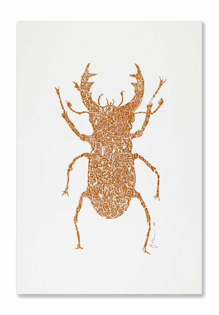 Stag Beetle | Copper