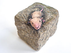 David Zinn - Mouse on rock