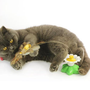Interactive Bird Toy For Cats - GenieMania Fr