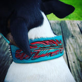 Tooled Feather Dog Collar