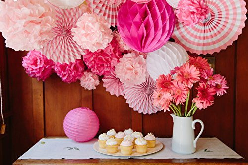 Tissue paper flower pom pom lantern fan birthday baby bridal shower tissue paper flower pom pom lantern fan birthday baby bridal shower wedding prom party 27 pcs mightylinksfo