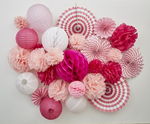 Tissue Paper Flower Pom Pom Lantern Fan Birthday Baby Bridal Shower Wedding Prom Party 27 pcs Decoration Kit PINK SPRING Celebration Stylists Favorite