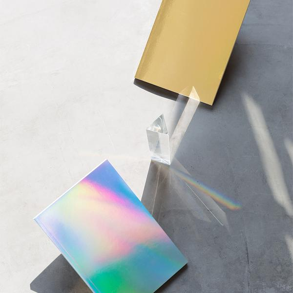 poketo holographic or gold notebook