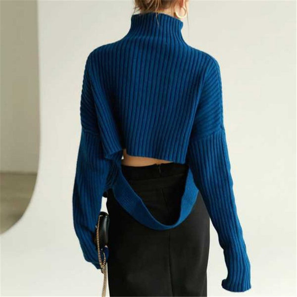 Fashion Long Sleeve High Collar Knit Top