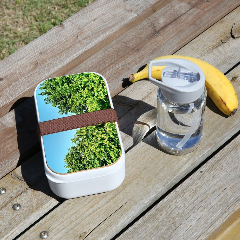 Lunch Box Food Container Snack Picnic Authentic Wood Strap Cutlery Green Nature