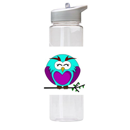 Water Bottle 750ml with Straw and Handle Drink Bottle, Owl