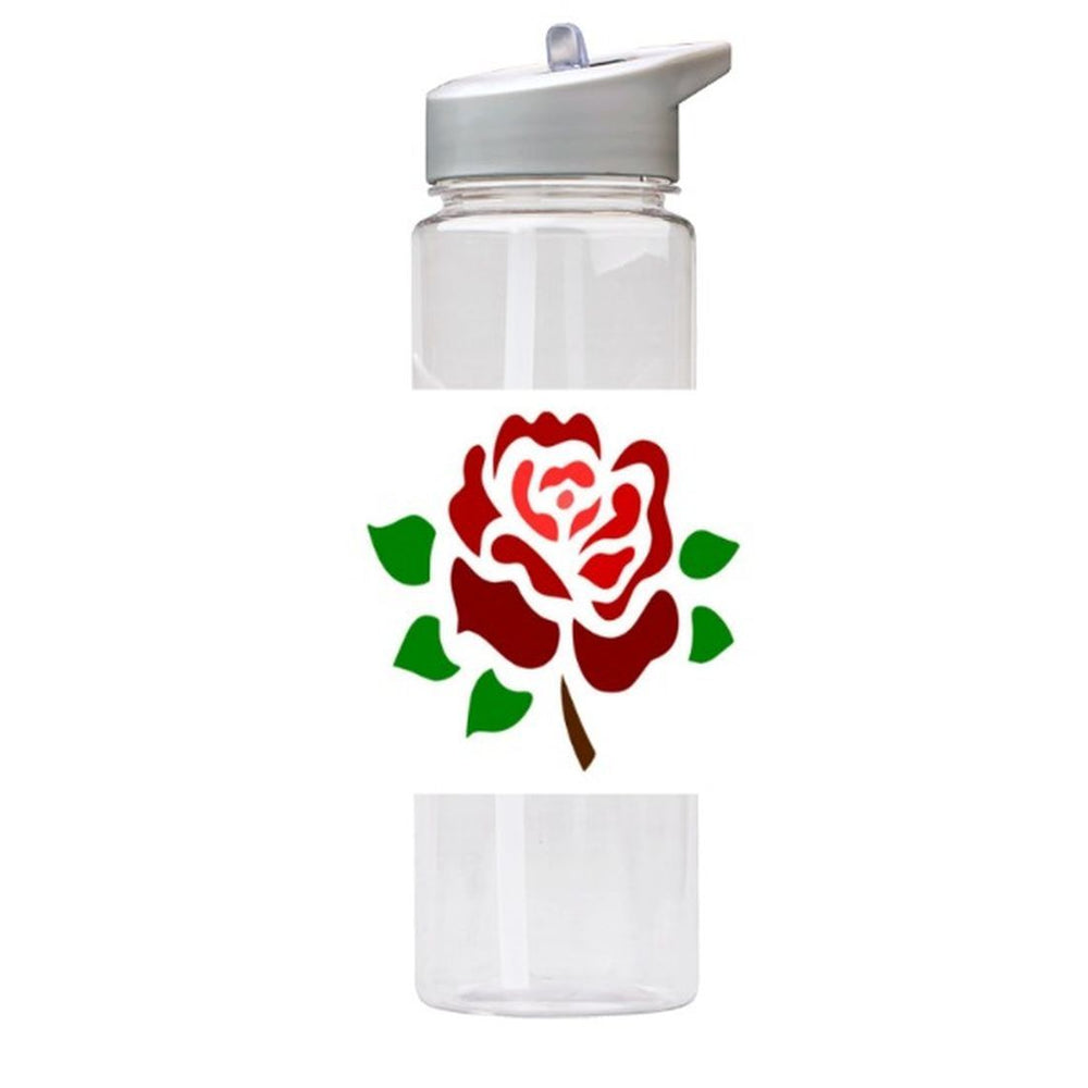 Water Bottle 750ml with Straw and Handle Drink Bottle, Rose
