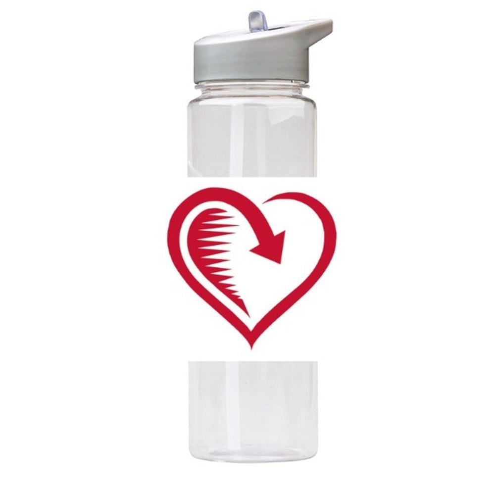 Water Bottle 750ml with Straw and Handle Drink Bottle, Way of Heart